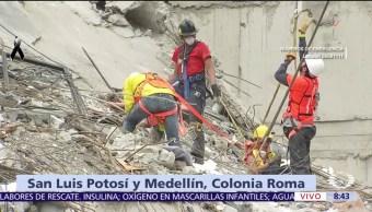 Rescatistas en edificio colapsado en colonia Roma detectan señales de vida