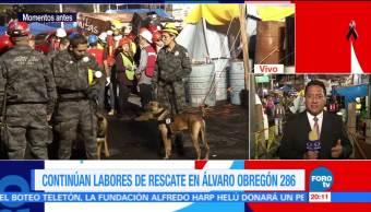 Dan masaje a rescatistas caninos en Álvaro Obregón
