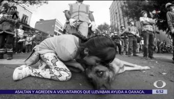 Niña besa a perro rescatista en derrumbe de Álvaro Obregón 286