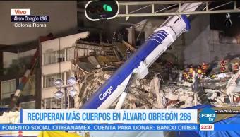 Recuperan más de 30 cuerpos en Álvaro Obregón 268
