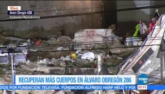 Suman 10 días las labores de rescate en el edificio de Álvaro Obregón 286