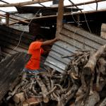 Afectaciones en Tecolutla, Veracruz, tras el paso del huracán Katia
