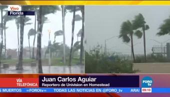 Árboles, viviendas, Florida, Irma