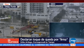 Declarar Toque Queda Irma Tampa Florida