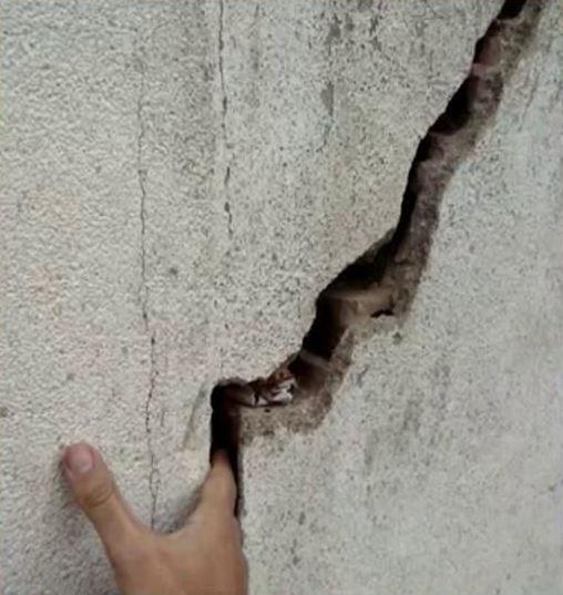 Surge app para reportar daños urgentes por sismo