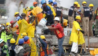 Resistencia de voluntarios y brigadistas mexicanos se fortalece tras el sismo