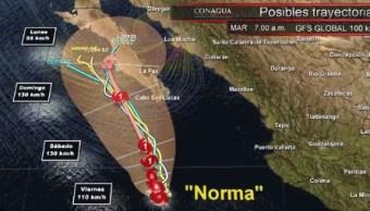 trayectoria de norma en baja california sur