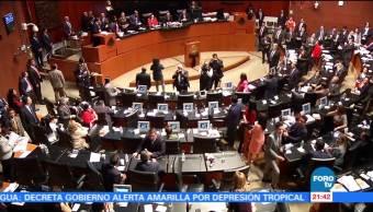 Diputados avalan ley contra desaparición forzada