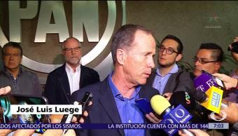 Renuncia José Luis Luege Tamargo al PAN