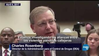 La renuncia de Charles Rosenberg de la DEA