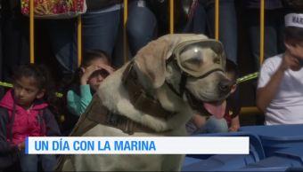 """Familias visitan instalaciones de la Secretaría de Marina para conocer a """"Frida"""""""