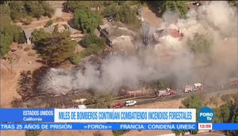 Bomberos combaten incendios forestales en California