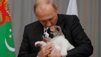 El presidente ruso besa a 'Vepali', su nuevo cachorro