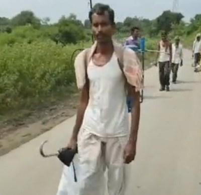 Mueren 19 granjeros y hospitalizan a 438 envenenados con pesticidas en India