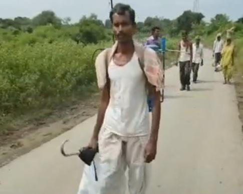 Mueren 19 granjeros y hospitalizan 438 envenenados pesticidas India