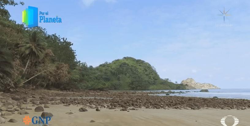 Isla del Coco, reserva natural y maravilla geológica de Costa Rica