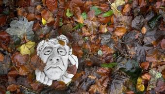 Gargola triste, salud mental del otoño, Chritopher Furlong