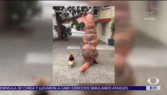 Hombre disfrazado de dinosaurio pasea con su perro en San Francisco