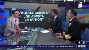 Polémica sobre el rescate de la vaquita marina, análisis en Despierta