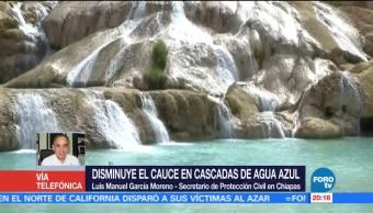 Reforestar, una de las soluciones para recuperar cauce Cascadas de Agua Azul
