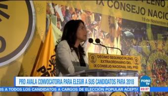 Candidato del PRD a la Presidencia será electo por un Consejo Nacional del partido