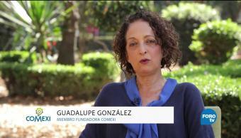 En la opinión de Guadalupe González