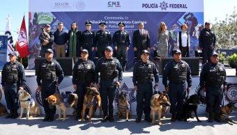 Se jubilan 14 oficiales caninos de la Policía Federal