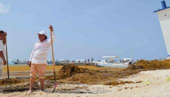 Fenómenos climatológicos provocan sargazo en playas de Q. Roo
