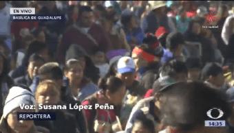 Millones Peregrinos Honran Guadalupana Virgen Guadalupe