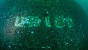 crece arrecife artificial dos anos hundimiento uribe 121 rosarito