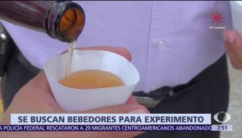 En Chile, científicos reclutan a voluntarios para beber cerveza durante 65 días