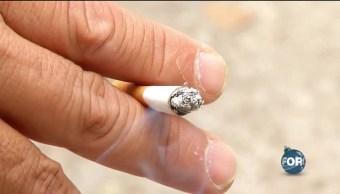 Aumenta el consumo de tabaco en Francia