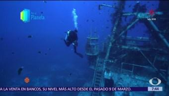 La Tierra Prometida: El mar Rojo y sus tesoros