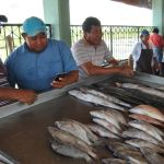 Pescados y mariscos, los platillos principales para cena de Navidad en Campeche