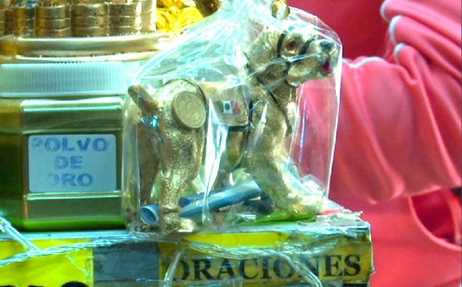 'Frida' es amuleto para el 2018 por el Año del Perro