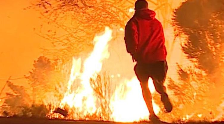 Rescatan conejo atrapado incendio forestal California