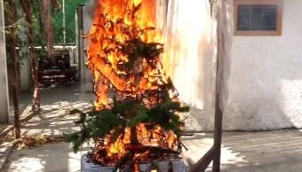Series navideñas de mala calidad pueden producir incendio en pocos segundos