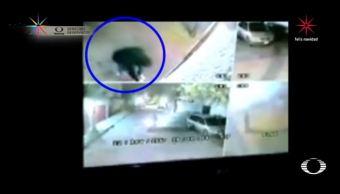 balean casas e intimidan habitantes robar xochimilco