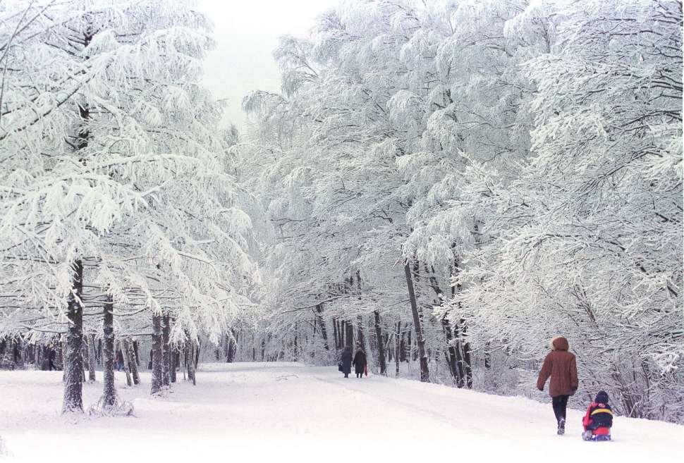 rusia-ursss-sovietica-ecologia