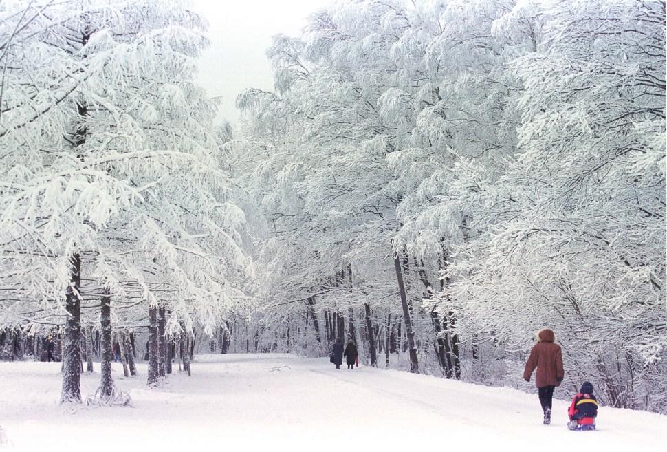 Ecologismo en las experiencias Socialistas. Rusia-ursss-sovietica-ecologia