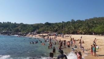 turistas disfrutan altas temperaturas puerto escondido oaxaca