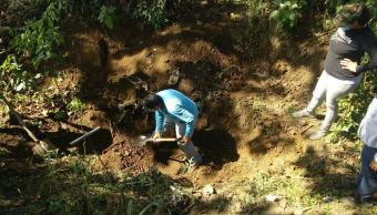 Hallan al menos 33 cuerpos en fosas clandestinas en Nayarit