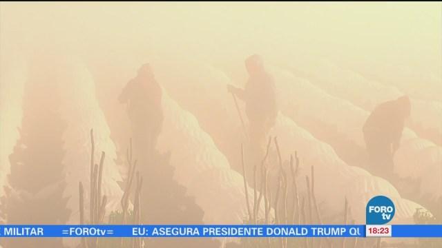 Frentes fríos afectan cultivos en Sinaloa