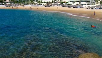 turistas nacionales y extranjeros visitan oaxaca