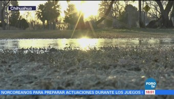 Ingresa frente frío 24 en Chihuahua