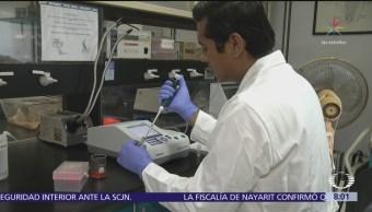 Investigadores mexicanos crean crema de chile para combatir obesidad