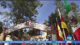 México sobre Ruedas: Santuario de la Mariposa Monarca en Angangeo, Michoacán