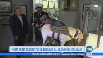 Perrita 'Frida' dona sus botas de rescate al Museo del Calzado