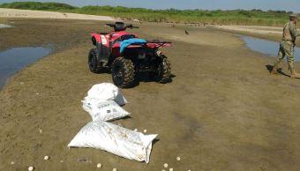 Recuperan 2 mil 750 huevos de tortuga golfina