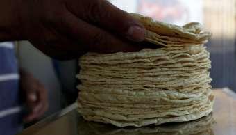 profeco vigila productores tortilla México